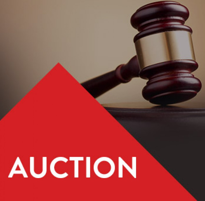 Spring 2020 Property Auction